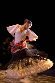 flamenco-m