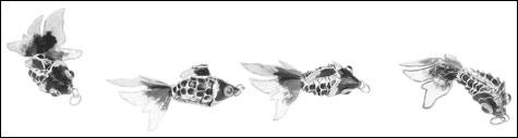 070105_inside_fish