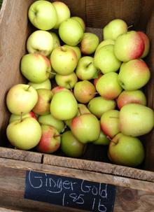 food_apples_main