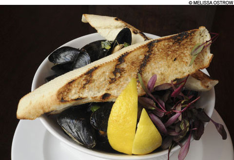 main_mussels_480