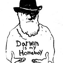 Westminster_Darwin
