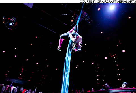 widget_circus_482