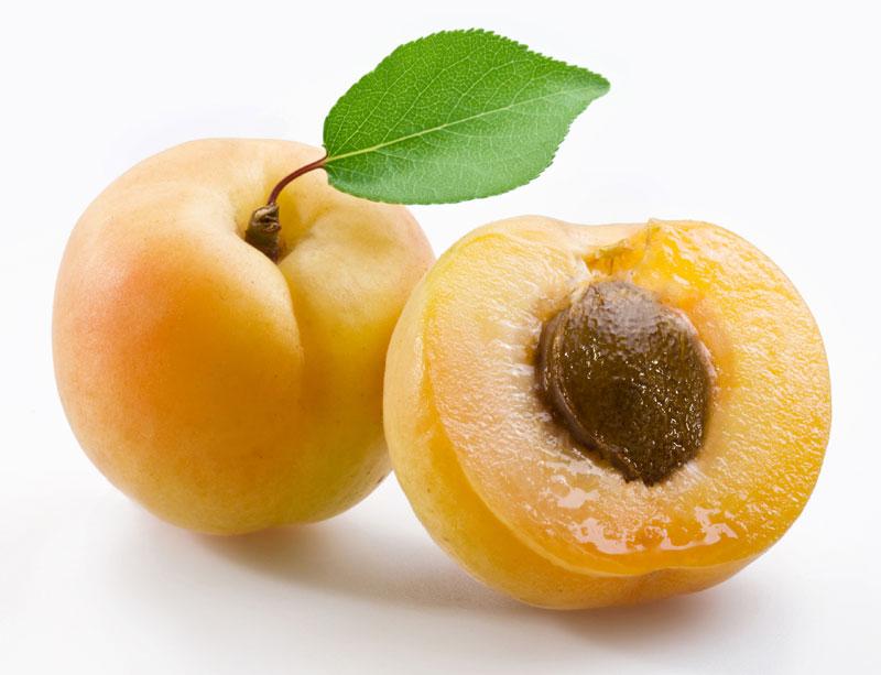 main2_apricot_800