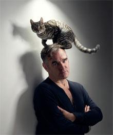 morrissey cat