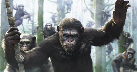 0613_Sum_Film_apes_top.jpg