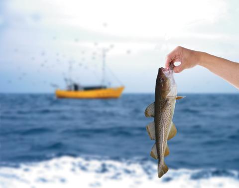 HandHoldingFish_main