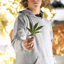 Marijuana_main