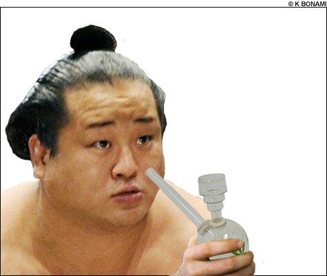 092013_sumo_main